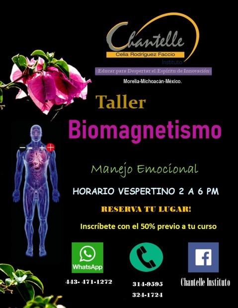 https://macroestetica.com/public/uploads/empresas/ChantalleInstitute/biomagnetismo.jpg