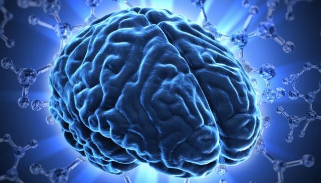 """""""Regeneran"""" cerebro viejo con sangre joven"""