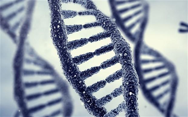 Lanzan proyecto de estudio del ADN para buscar tratamiento contra el cáncer